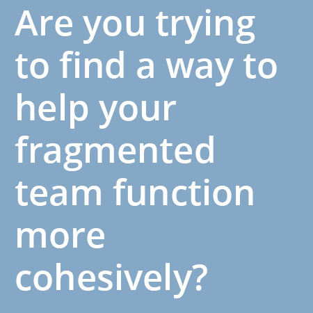 Are you trying to find a way to help your fragmented team function more cohesively?